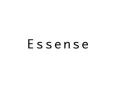 Beispiel Unternehmensname Essense